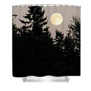 August Full Moon - 1 Shower Curtain
