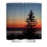 August Glow Pine Shower Curtain