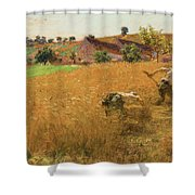 Augustin Lhermitte Shower Curtain