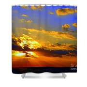 Aurelian Shower Curtain