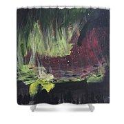 Aurora Bolialis Shower Curtain