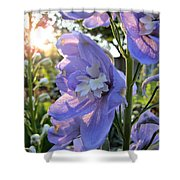Aurora Light Purple Delphinium And Sunset No. 2 Shower Curtain