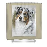 Aussie Shepherd Portrait Shower Curtain
