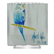 Austalian Parrot Shower Curtain