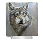 Austin's Wolf Shower Curtain