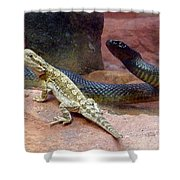 Australia - The Taipan Snake Shower Curtain
