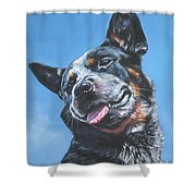 Australian Cattle Dog 2 Shower Curtain