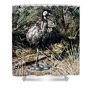 Australian Emu Shower Curtain