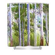 Australian Gum Trees Shower Curtain