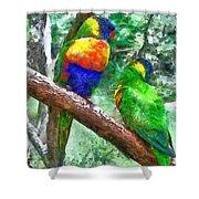 Australian Parakeets Shower Curtain
