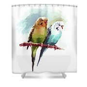 Australian Parrots 03 Shower Curtain