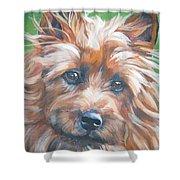 Australian Terrier Shower Curtain