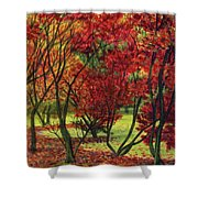 Autum Red Woodlands Painting Shower Curtain