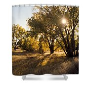 Autum Sunburst Shower Curtain