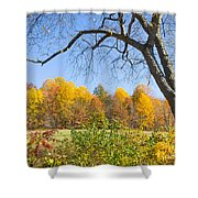 Autumn # 1 Shower Curtain