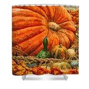 Autumn - Pumpkin - Great Gourds Shower Curtain by Mike Savad