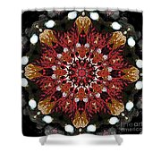 10446 Autumn 01 Kaleidoscope Shower Curtain
