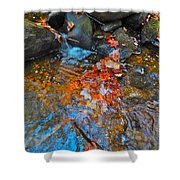Autumn 2015 166 Shower Curtain