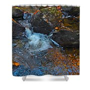 Autumn 2015 167 Shower Curtain