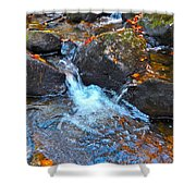 Autumn 2015 170 Shower Curtain
