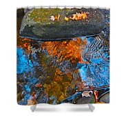 Autumn 2015 249 Shower Curtain