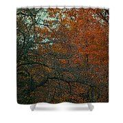 Autumn 2015 Orange Trees Pa 01 Vertical Shower Curtain