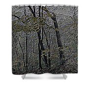 Autumn 2015 Panorama In The Woods Pa 01 Shower Curtain