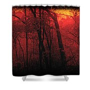 Autumn 2015 Panorama In The Woods Pa 06 Shower Curtain