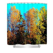 It's Getting Colder Every Day And Soon It Will Be Winter Again    Shower Curtain by Hilde Widerberg