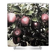 Autumn Apples - Luther Fine Art Shower Curtain