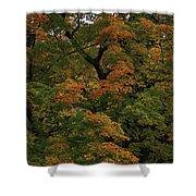 Autumn Arrives Shower Curtain