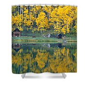 Autumn Aspens Along Route 550, North Shower Curtain