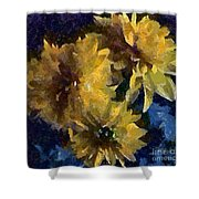 Autumn Asters Shower Curtain