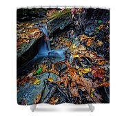 Autumn At A Mountain Stream Shower Curtain by Rick Berk