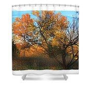 Autumn At Bull Run Shower Curtain