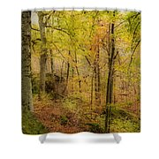 Autumn At Rim Rock Shower Curtain