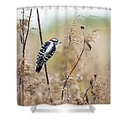Autumn At The Meadows Shower Curtain