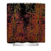 Autumn Aura Shower Curtain