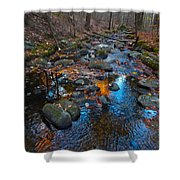 Autumn B 2015 111 Shower Curtain