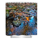 Autumn B 2015 113 Shower Curtain