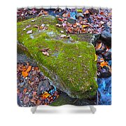 Autumn B 2015 114 Shower Curtain