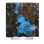Autumn B 2015 130 Shower Curtain