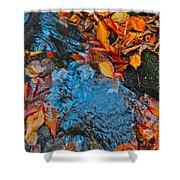 Autumn B 2015 185 Shower Curtain