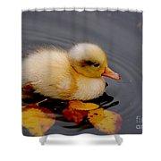 Autumn Baby Shower Curtain by Jacky Gerritsen