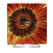 Autumn Beauty Sunflower Shower Curtain