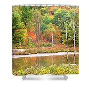 Autumn Beaver Pond Shower Curtain
