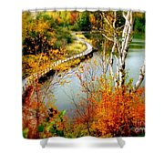 Autumn Birch Lake Boardwalk Shower Curtain
