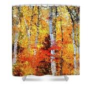 Autumn Birches Shower Curtain