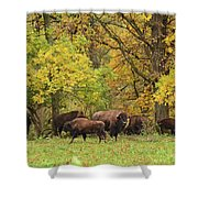 Autumn Bison Shower Curtain