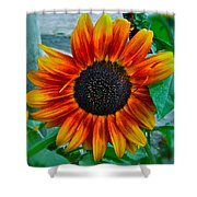 Autumn Blessing Shower Curtain